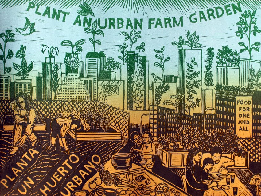 Plant An Urban Farm Garden