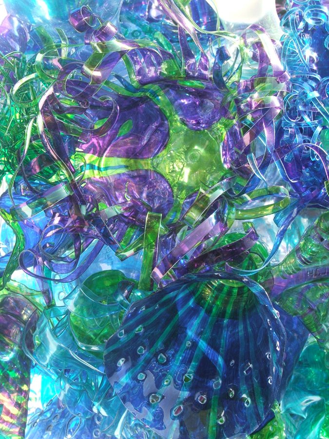 Seacycles/Blue Reef 3