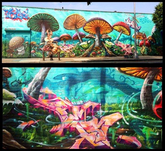 Mushroom Forest, GORE - PER - SKE