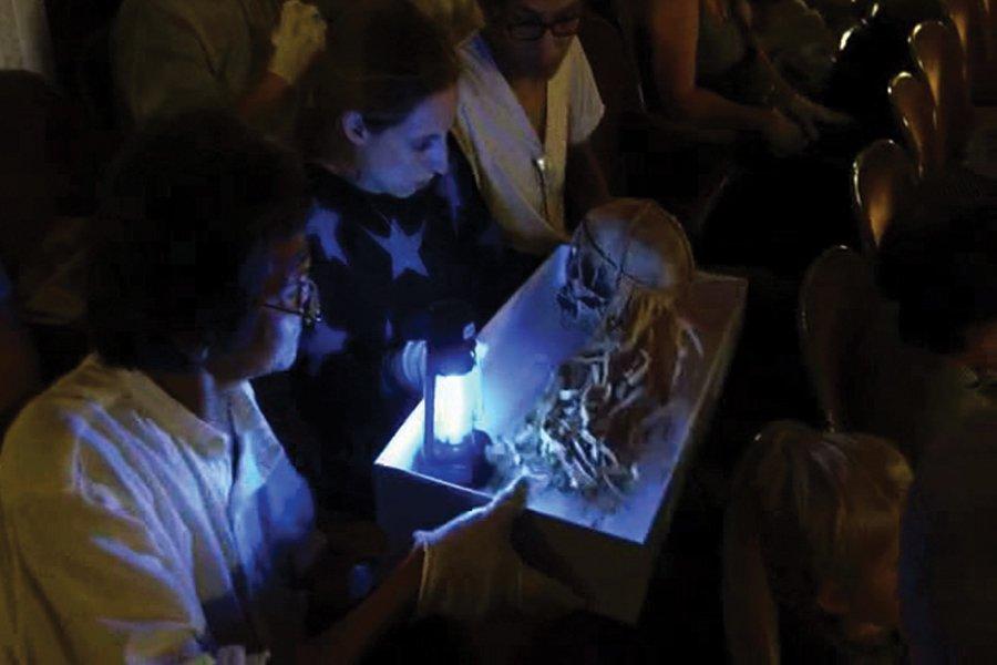Audience Skull Tray